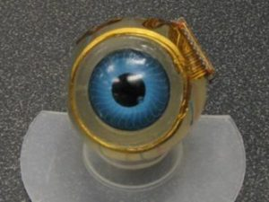 mit-electric-eye-implant-project3-500x3752