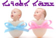 babies in eggs on white background